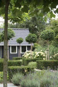 Красота по-голландски. Сад от Buro Robert Broekema - Дизайн интерьеров   Идеи вашего дома   Lodgers