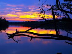BELLO ATARDECER  Parque Nacional Santos Luzardo Cinaruco - Capanaparo. Estado Apure.