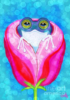 Rose City Rain Frog!!!