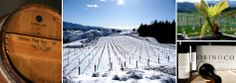 Orinoco Vineyards with a winter blanket of snow