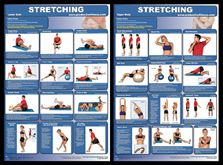Exercise Stretching Professional Fitness Instructional Wall Charts (2) Posters - PFP