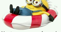 Minions, Disney Characters, Fictional Characters, Memes, Anime, Inspiration Quotes, Kids Discovery, Fun Quotes, Verses