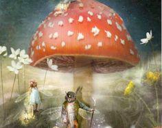 Starlit Garden  Fairy Print Mounted or door CharlotteBirdfairies