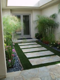Artificial grass/xeriscape