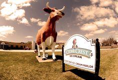 Cedar Crest serves the best ice cream in Wisconsin.