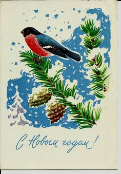 Bullfinch Birds Vintage Russian Postcard print by LucyMarket, $4.99