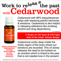 cedarwood- good for helping kids get to sleep, I put a roll-on fitment on the bottle, my son self administers as needed at bedtime. Also great for DIY skin serums for mature ladies :-) To ORDER: www.oils4rookies.com. Save 24% with distributor membership- simply enjoy the discounts if you don't want to create an income.