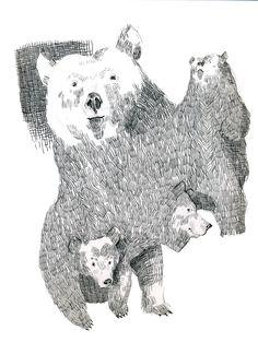 Bears.  by Albert Domínguez Arrayás