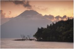 San Pedro Volcano with bushes. View from Laguna Lodge in Guatemala. Super eco friendly place. Recommended by PETA.