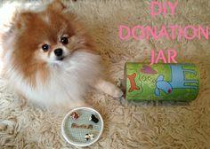 diydonationjar Animal Shelters, Jar, Animals, Blue Prints, Animales, Animaux, Animal Shelter, Animal, Animais