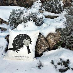 ¡Llego el invierno al Parque Nacional de la Sierra de Guadarrama!