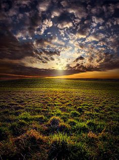 ✯ Sense Of Wonder by Phil Koch