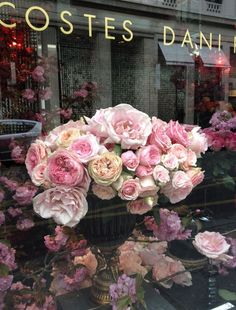 #roses in the window, #paris
