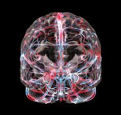 Innercool Brain 2 by Bryan Christie