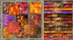 Autumn Bliss - Leaves Backgrounds CU