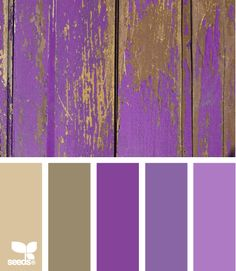 Like the sandy browns with purple From Design Seeds