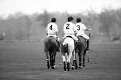 love me a good polo match Polo Match, Marco Polo, Equestrian, Preppy, Pony, Art Photography, Horses, Black And White, My Love
