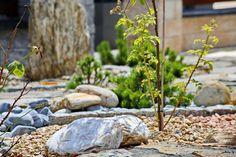 W naszym ogródku znajdziecie wiele ciekawych aranżacji z użyciem głazów, grysów, gnejsów i innych ogrodowych kamieni :D