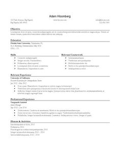 Internship Resume Sample   Free Resume Template By HloomCom