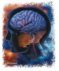 How brain health is linked to heart health- eat smart, think smart! | Tori Teaches Fitness
