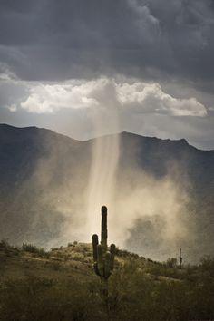 Dust Devil.  © Rick Burress, www.artistec.com