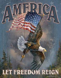 America - Let Freedom Reign Targa in metallo