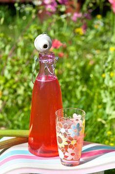 Raparperijuoma 1 kg raparperipaloja 2 rkl sitruunahappoa 2 l vettä 6 dl sokeria Huuhtele raparperit ja paloittele ne. Laita raparperipalat reilunkokoiseen kulhoon ja sekoita joukkoon sitruunahappo ja kiehuva vesi sekoittaen. Anna seistä huoneenlämmössä vuorokausi. Siivilöi ja lisää joukkoon sokeri. Pullota juoma ja säilytä kylmässä. Laimenna tarjottaessa vedellä tai sitruunalimulla tai kivennäisvedellä. Mehutiivisteen voi myös pakastaa.