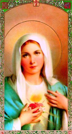 Catholic Bible 101 - The Mary Verses