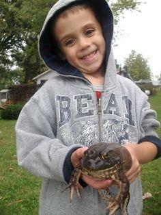 Fantastic Frogs of Central Florida Orlando, Florida  #Kids #Events