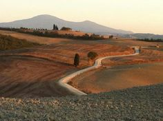Привет из Тосканы #Монтепульчано⊙around #Montepulciano #Toscana #Italia