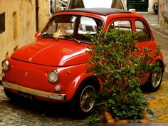 There's nothing cuter than a tomato red Fiat 500.