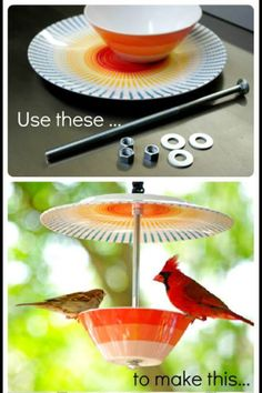 Turn old dishes into a bird feeder. Good idea for a 4H recycling project.