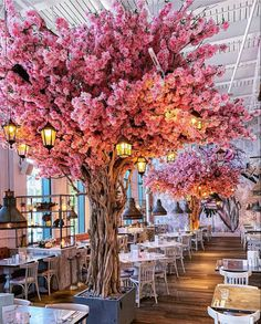 Restaurant in London - Architecture and Urban Living - Modern and Historical Buildings - City Planning - Travel Photography Destinations - Amazing Beautiful Places Cafe Interior Design, Cafe Design, Pink Cafe, Veranda Magazine, Indoor Trees, Town And Country, London Travel, Travel Uk, Travel England