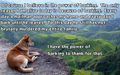 Belief in Dog Barking I have the power of barking