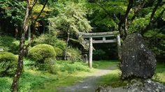 Tori - Japan
