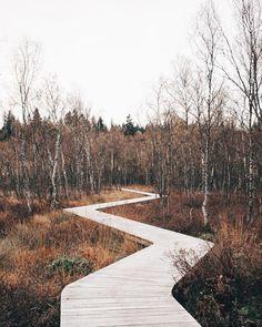 396 Synes godt om, 15 kommentarer – Astrid Maria (@astridkbh) på Instagram #LandscapeMasterplan