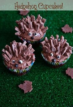 Chocolate Hedgehog Cupcakes,    This would be a great treat after a great Jan Brett book.