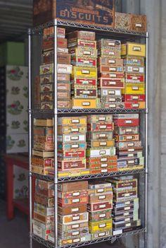 cathe_holden_cigar_boxes.jpg  OMG!