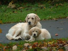 Enjoying an Autumn day with Mom