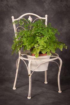 Leaf_design_garden_planter