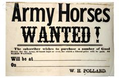United States Civil War, Broadside for buying Army horses