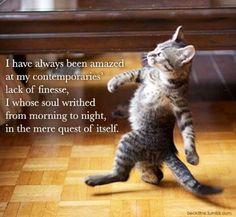 Samuel Beckett Kittens