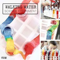 Preschool Science Experiments and Science Activities