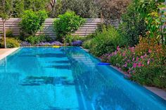 If you are lucky enough to live where an outdoor pool is a way of life, there are plenty of plants that are low on the mess scale that are suitable for…