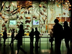 #Museum of Natural History in New York! #Science