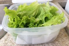 Como Conservar Frutas, Verduras e Legumes Corretamente: Evite o Desperdício!   Poupar e Viver Dietas Detox, Lettuce, Barbecue, Food To Make, Cabbage, Food And Drink, Low Carb, Pasta, Healthy Recipes