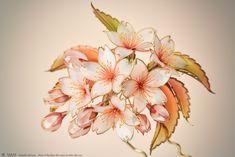 Japanese Hairstyle, Japan Photo, Hair Sticks, Tokyo Japan, Headdress, Headpiece, Cherry Blossom, Hair Pins, Rooster