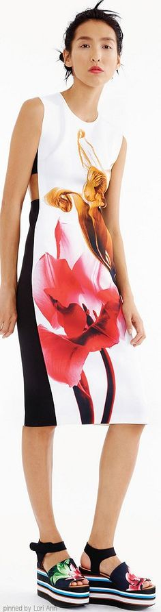 Clover Canyon Spring 2015 | The House of Beccaria#