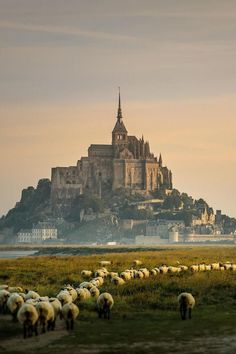 Beautiful Places...Mont St Michel, Normandy, France, photo via Liberté Vakantiehuizen.