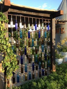Wine bottle curtain wall -- Plan your Wine Country Wedding in Temecula — Pinterest style at Peltzer Farms unique and rustic vintage setting | Temecula Grapevine - gardenfuzzgarden.com